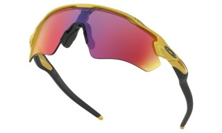 Oakley RADAR®EV PATH™ oo9208-69