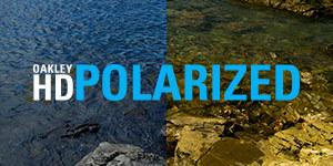 polarized oakley
